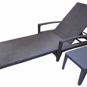 Sunny pool bed furniture